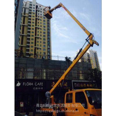 供应青岛市搬家公司 蚂蚁到家自主封装打包胶带(BOPP-15-160)