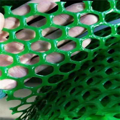 绿色塑料平网 苏州塑料网 白色养殖网厂家