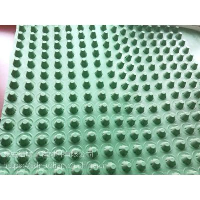 屋顶绿化s塑料排水板车库顶板排水板【泰安诺联】定制发货