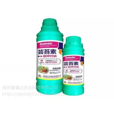 芸苔素内酯500ml芸苔素大包装使用更方便