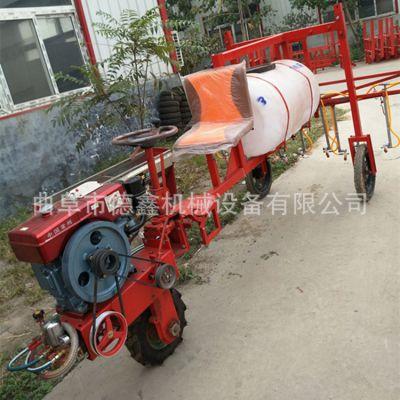 工厂直销三轮车自走式高压喷雾机 麦子灭虫打药机 喷雾面积大