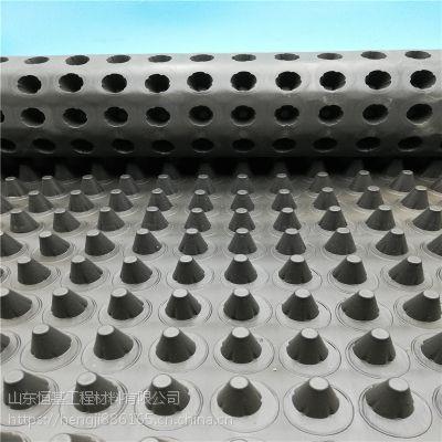 广西直销屋顶种植hdpe塑料排水板 H2.0cm车库顶板绿化疏水板厂家
