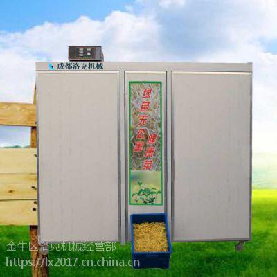 生态豆芽机机器价钱