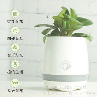 新款2017Qplant-1s智能音乐花盆 蓝牙音箱 送礼 办公室家居咖啡厅