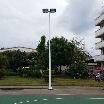 一拖二双头6米篮球场灯杆,型号:YG1-2LQ