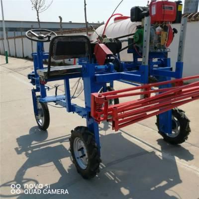 汽油自走式高杆玉米打药机 充电式喷雾器家用小型喷药机富兴效果好