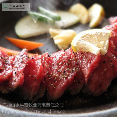 广西重点企业有机肉牛养殖扶贫爱心活牛交易认养