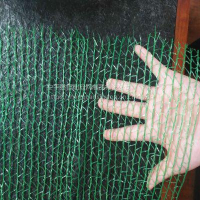 河北批发2针盖土网 绿色防尘网 盖沙专用防尘网 大量现货