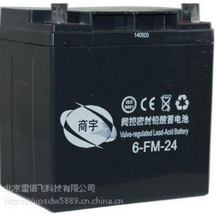 杭州东洋6GFM38铅酸蓄电池12V38AH官网批发直销