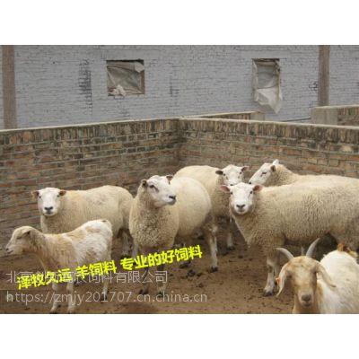 夏洛莱羊繁殖率怎么样?