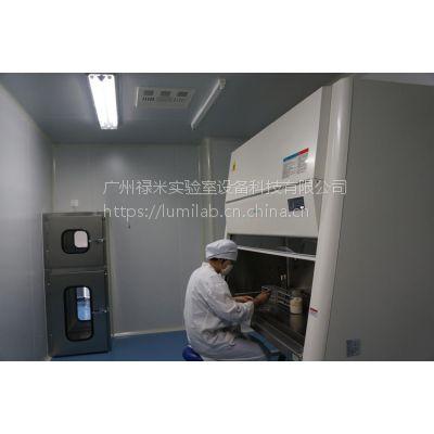 HIV实验室净化工程公司 禄米 万级
