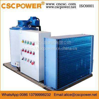 2吨现货 厂家直销 质量保证 淡水片冰机