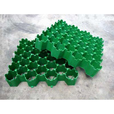 山东植草格园林绿化停车场植草格供应//HPDE塑料板
