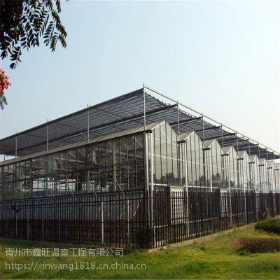 青州鑫旺温室工程 玻璃温室大棚建设工程价格