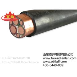 泰开特种电缆供应变频电缆采用新设计传输性能更好