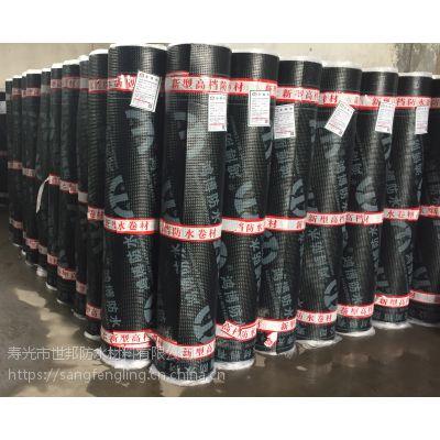 防水厂家供应SBS火烤型沥青卷材屋面防水