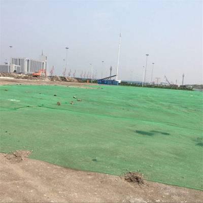 密目工程安全网 防尘绿网厂家 便宜的防尘网价格