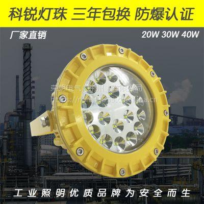 BLD190隔爆型LED防爆灯 40WLED防爆泛光灯
