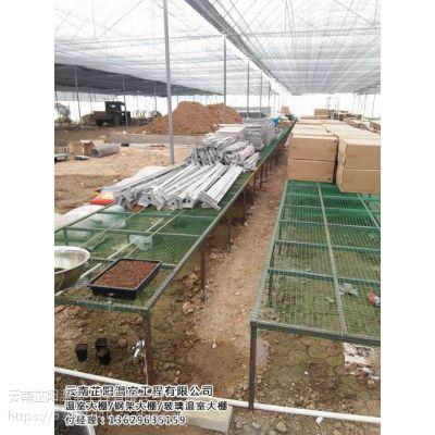 农业温室大棚费用、农业温室大棚、芷阳温室
