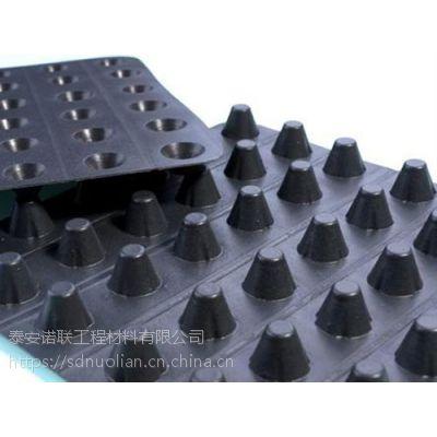 塑料排水板诺联公司专供高质量2cm排水板价格优惠