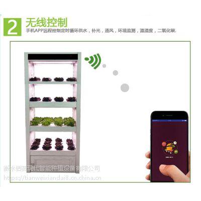全智能生态菜养柜无土栽培设备阳台种植设备智能蔬菜种植设备