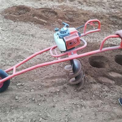 嘉祥县双人操作便携式植树钻洞机 启航牌果园施肥打洞机 防风固沙挖坑机厂家