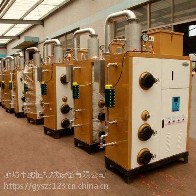 四川省广元市厂家生产生物质热水锅炉
