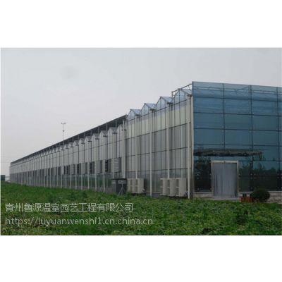 绥化 蔬菜连栋玻璃温室大棚 承建商