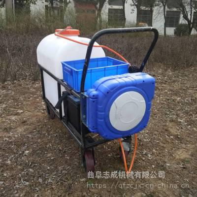 生产批发 105升蓄电池喷雾器 高压手推式喷雾器 茶园电动杀虫机