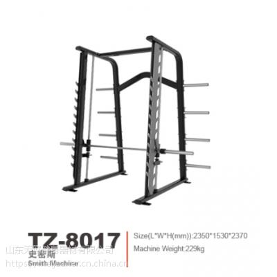 专注健身 打造品质 天展史密斯健身器材 TZ-8017