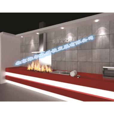 北京维尔森供应模拟油锅灭火厂家直销