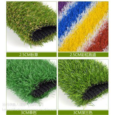 供应厂家直销幼儿园人造草坪,幼儿园彩色草坪,学校操场绿色地毯,户外塑料假草皮