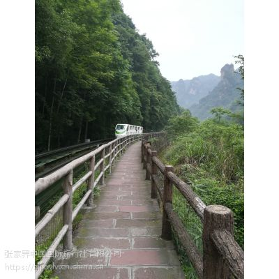 去张家界国家森林公园想健康徒步游安排行程