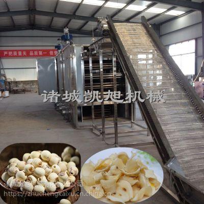 凯旭专业制造百合大型网带式烘干机 莲子全自动干燥设备