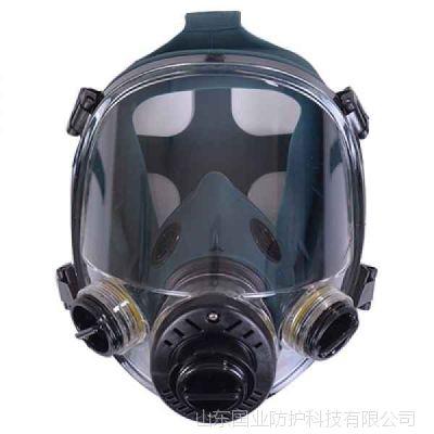 山东国业一护防毒面具全面罩