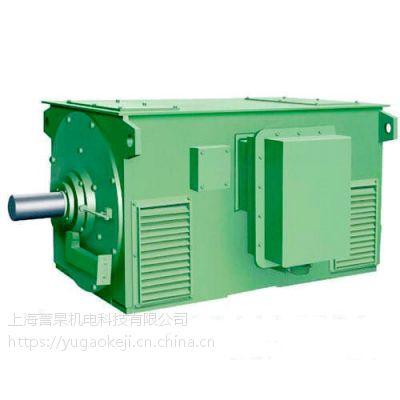 Y系列高压电机