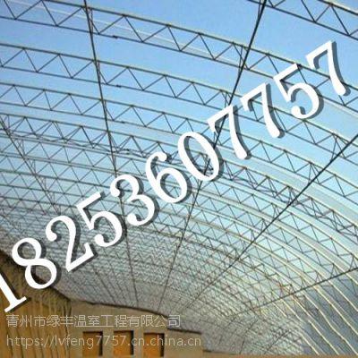 海口大棚骨架厂家,绥化温室骨架建造__青州绿丰温室