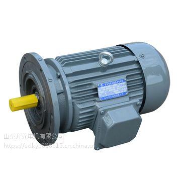 厂价供应密州牌-摆线减速机专用 YE2 160M-4-11千瓦6号- 山东开元电机