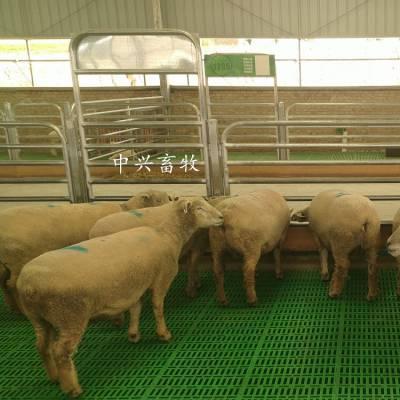 羊场专用漏粪地板