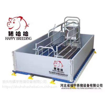 新型母猪分娩床厂家直销母猪产床欧式猪用产床
