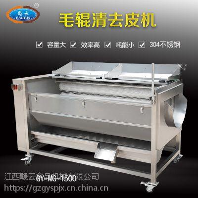供应赣云毛辊清洗机自动红薯清洗去皮机优质不锈钢毛刷去皮机