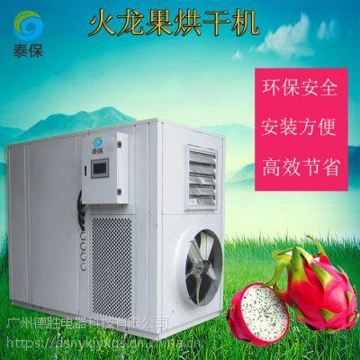 厂家优质供应泰保TB-ZT-HGJ06火龙果烘干机,节能环保