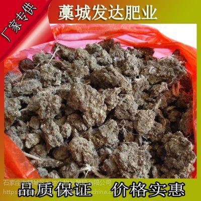 广西崇左当地用的发酵羊粪怎么卖?鸡粪和羊粪相比哪个肥效更持久?