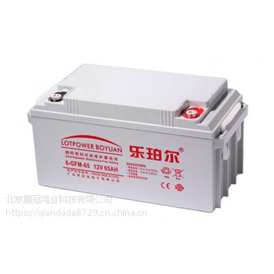 乐珀尔6-GFM-65蓄电池12v65AH铅酸蓄电池ups应急不间断电源专用