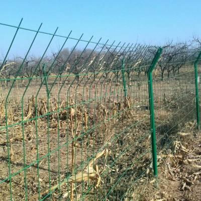 生态园林隔离网 圈地双边丝护栏网 西安绿色铁丝网