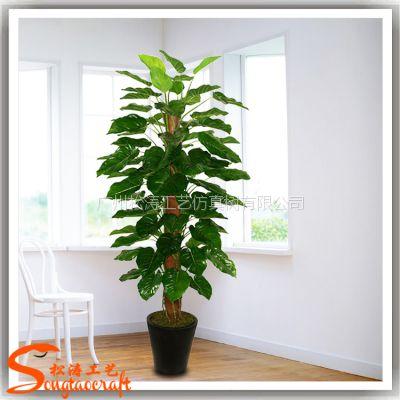厂家直销仿真绿萝盆栽 室内小型花卉 包棕绿萝盆栽植物