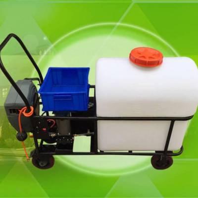 热卖果园园林苗圃喷药高压打药机 手推式电动喷雾器 农用消毒车
