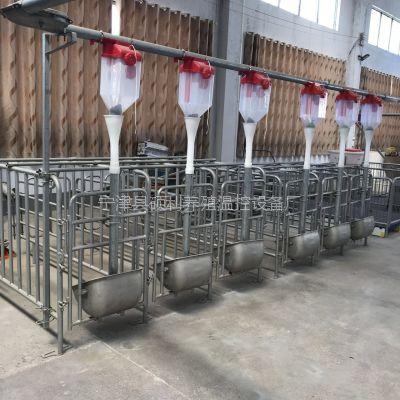地斗式养猪自动喂料线养猪自动喂料全套设备厂家为您详细价绍使用优点