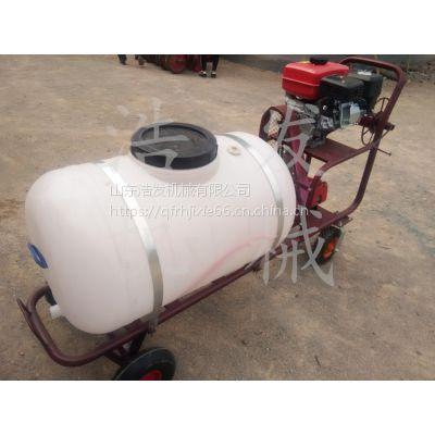 高压农药喷洒机 高射程打药喷雾器200升容量