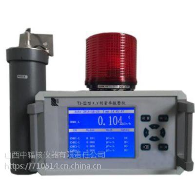 厂家直销医院环保使用固定式X、γ剂量率报警仪